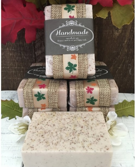 Apple Cinnamon Oatmeal Goat's Milk Soap