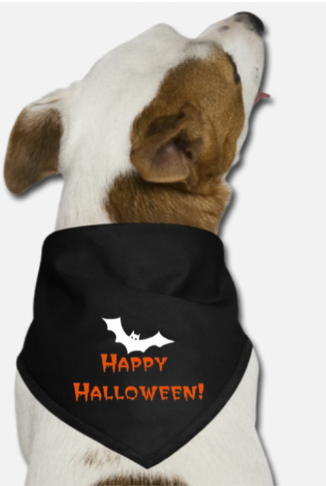 Happy Halloween Triangle Bandana